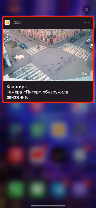 1600x_image.png?1571821200